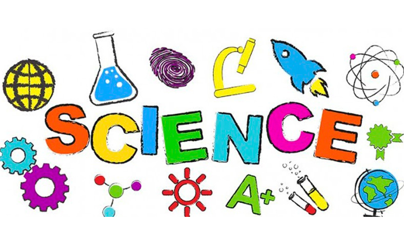 science_1ºPrimaria
